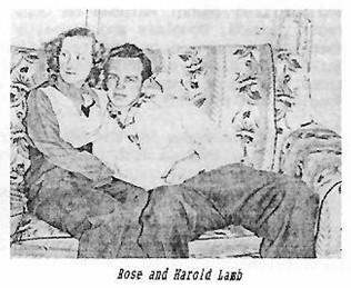 Lamb Harold Rose